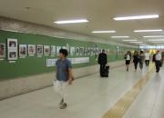 第38回北海道高齢者生き活き写真展が終了